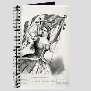 Freedom to Ireland - 1866 Journal