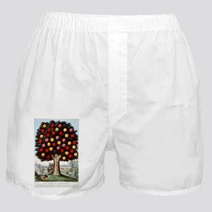 The tree of temperance - 1872 Boxer Shorts