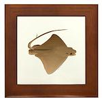cownose ray f Framed Tile