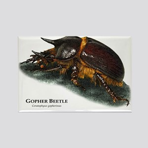 Gopher Beetle Rectangle Magnet