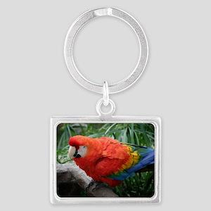 Scarlet Macaw Landscape Keychain