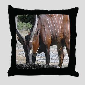 Bongo Throw Pillow