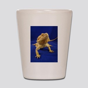 Bearded Dragon Shot Glass