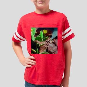sq-oil-highland-DSC08353 Youth Football Shirt