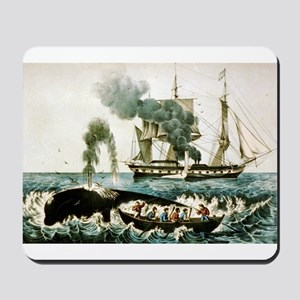 Whale fishery - attacking a right whale - 1907 Mou