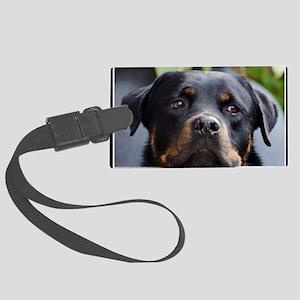 Rottweiler Dog Large Luggage Tag