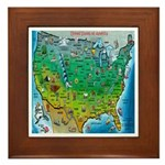 USA Cartoon Map Framed Tile