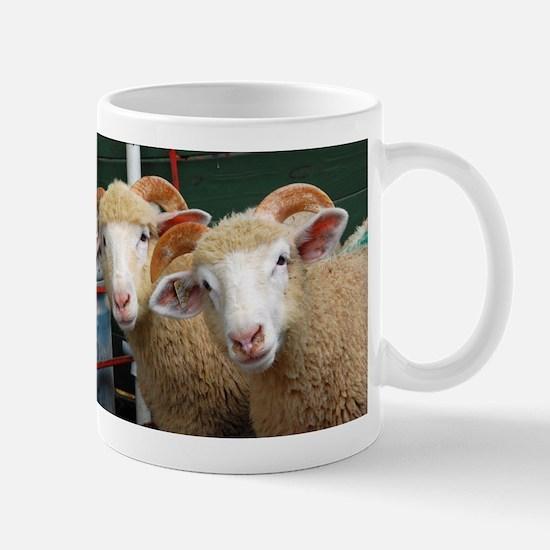 Inquisitive horned ewe lambs Mug