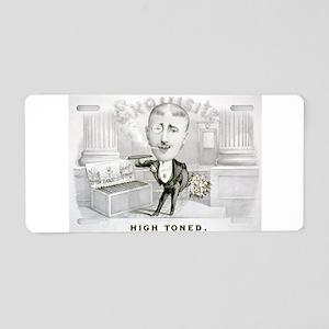 High toned - 1880 Aluminum License Plate