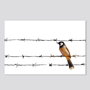 Bird on a Wire Postcards (Package of 8)