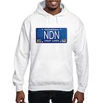 Michigan NDN Pride Hooded Sweatshirt