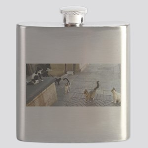 Merkaz Cats 19 Flask