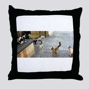 Merkaz Cats 19 Throw Pillow