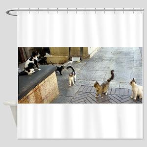 Merkaz Cats 19 Shower Curtain