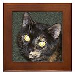 Dark Tortoiseshell Calico Framed Tile