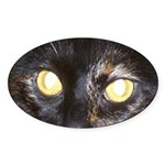 Dark Tortoiseshell Calico Oval Sticker