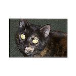 Dark Tortoiseshell Rectangle Magnet (100 pack)
