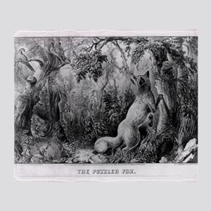 The puzzled fox - Puzzle Picture - 1872 Throw Blan
