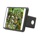 Dew on Grass 1x2 Hitch Cover