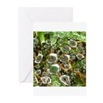 Dew on Grass 1x2 Greeting Cards (Pk of 20)