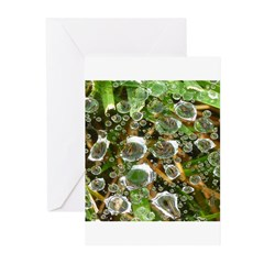 Dew on Grass 1x2 Greeting Cards (Pk of 10)