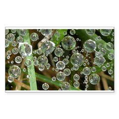 Dew on Grass 1x2 Decal