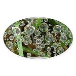 Dew on Grass 1x2 Sticker