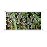Dew on Grass 1x2 Banner