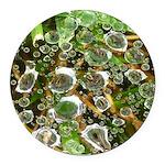 Dew on Grass 1x2 Round Car Magnet