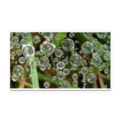 Dew on Grass 1x2 Rectangle Car Magnet