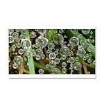 Dew on Grass 1x2 Car Magnet 20 x 12