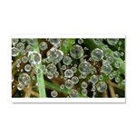 Dew on Grass 1x2 Car Magnet 20 x 12