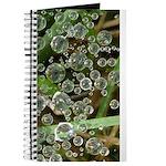 Dew on Grass 1x2 Journal