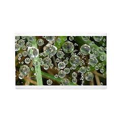 Dew on Grass 1x2 3'x5' Area Rug