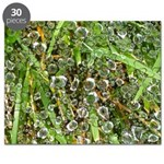 Dew on Grass 1x2 Puzzle