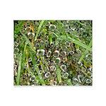 Dew on Grass 1x2 Throw Blanket