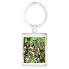 Dew on Grass 1x2 Keychains