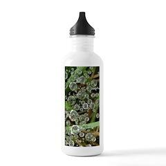 Dew on Grass 1x2 Water Bottle