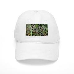 Dew on Grass 1x2 Baseball Baseball Cap