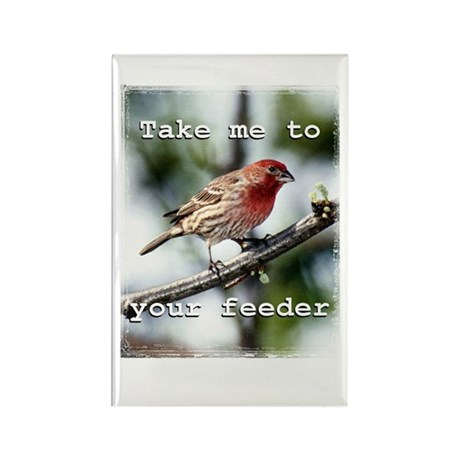 Hungry Bird Magnet (10 pack)