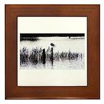 Seagull resting Framed Tile