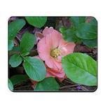 Camellia Japonica Mousepad