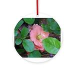 Camellia Japonica Ornament (Round)