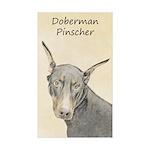 Doberman Pinscher Sticker (Rectangle 50 pk)