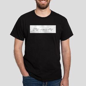 Schroedinger Equation Dark T-Shirt