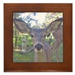 Young deer with an Angel Framed Tile