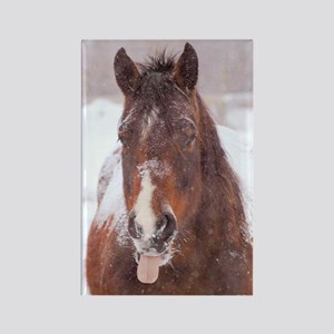 Horse in Snow Rectangle Magnet