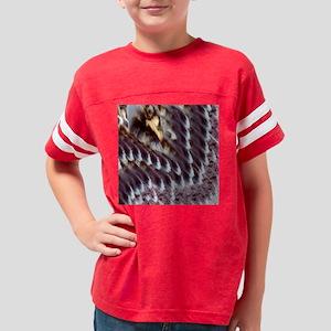 Cat doxie dog Youth Football Shirt