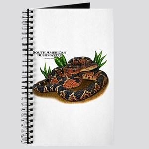 South American Bushmaster Journal