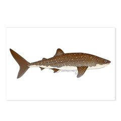 Whale Shark f Postcards (Package of 8)